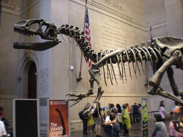 Museos NY