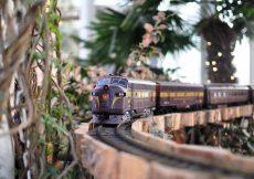 Exposicion de Trenes New York Botanical Garden