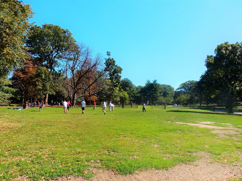 Visitar Prospect Park