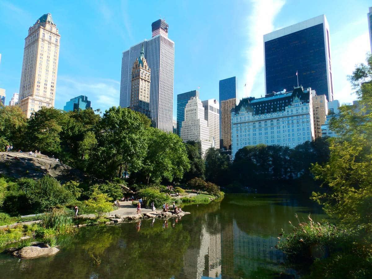 picnic en Nueva York