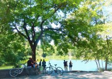 Visitar Central Park
