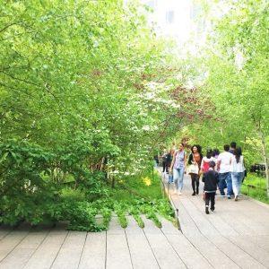 Pasear por la High Line, el parque elevado de NY