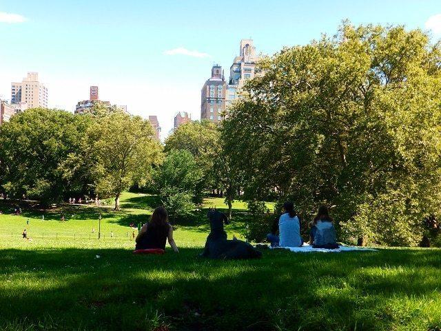 Que no hay que hacer en Nueva York