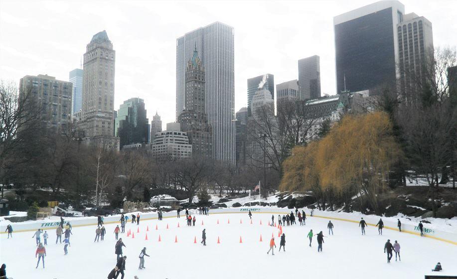 Actividades Central Park
