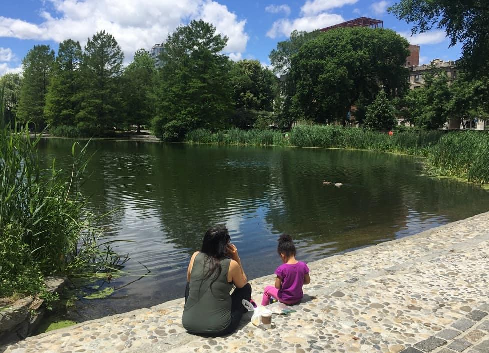 Visitar Central Park en NY