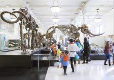 Museos para niños en Nueva York